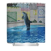 Dolphin Walking On Water Digital Art Shower Curtain