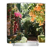 Dolphinfountain And Flowers - France Shower Curtain