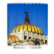 Dome Of Palacio De Las Bellas Artes Shower Curtain