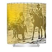 Don Quixote Rides Again Shower Curtain