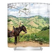 Donkey And Hills Shower Curtain