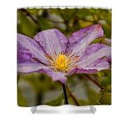 Donna's Purple Flower Shower Curtain