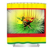 Don't Be Chicken, Be Cocky Shower Curtain