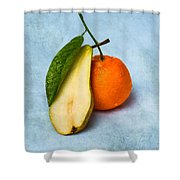 Don't Eat The Contrabass Player Shower Curtain by Alexander Senin
