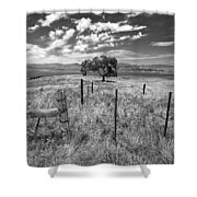 Don't Fence Me In - Black And White Shower Curtain