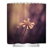 Don't Forget Me Shower Curtain