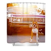 Don't Touch My Ride Shower Curtain