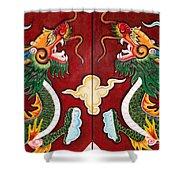 Door Dragons 03 Shower Curtain