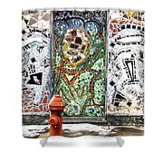 Door Mosaic Shower Curtain