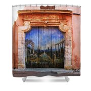 Door With A View Shower Curtain