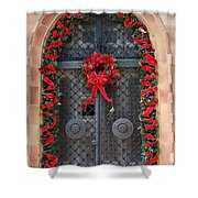 Door With Christmas Decoration  Shower Curtain