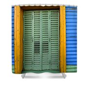 Doors And Windows Buenos Aires 14 Shower Curtain
