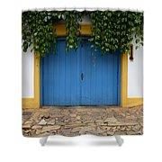 Doors And Windows Minas Gerais State Brazil 11 Shower Curtain