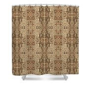 Doors Of Zanzibar Ginger Shower Curtain