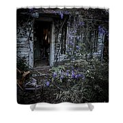 Doorway And Flowers Shower Curtain