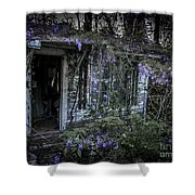 Doorway And Flowers Two Shower Curtain
