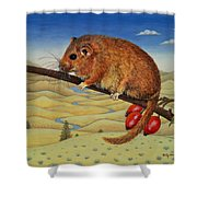 Dormouse Number Two, 1994 Shower Curtain