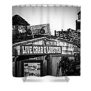 Dory Fishing Fleet Live Crab And Lobster Sign Picture Shower Curtain