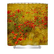 Dots Of Red Shower Curtain