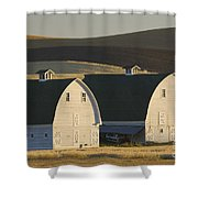 Double Barns Shower Curtain