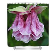 Double Columbine Named Pink Tower Shower Curtain