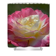 Double Delight Shower Curtain