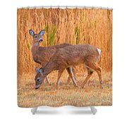 Double Does Shower Curtain