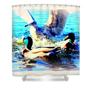 Double Dip Duck And See Gull  Shower Curtain