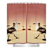 Double Gulls Collage Shower Curtain