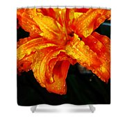 Double Petaled Lilly Shower Curtain