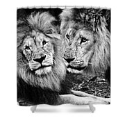 Double Power Shower Curtain