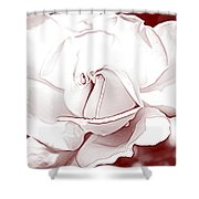 Double Rose Sweet Shower Curtain