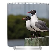 Double Take Shower Curtain