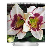Double The Bloom Shower Curtain