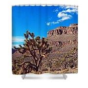 Doubletop Landscape Shower Curtain