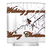 Dove - Snowy Limb - Christmas Card Shower Curtain