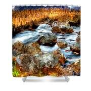 Down By The Brook Shower Curtain