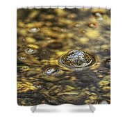 Down By The Bubbling Spring Shower Curtain