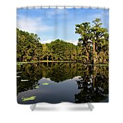 Down In The Bayou Shower Curtain