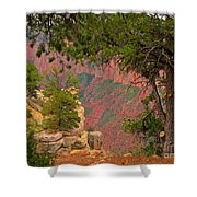 Down Into The Grand Canyon Shower Curtain
