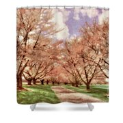 Down The Cherry Lined Lane Shower Curtain