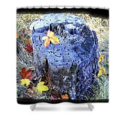 Down To Earth Beauty Shower Curtain