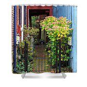 Downtown Garden Path Shower Curtain