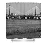 Downtown Marsh Shower Curtain