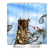 Downy And Titmouse Playing On Lichen Stump Shower Curtain