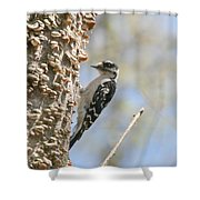 Downy Pause Shower Curtain