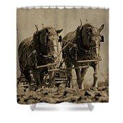 Draft Horses Shower Curtain
