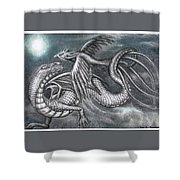 Dragon And Phoenix Shower Curtain