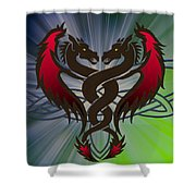 Dragon Duel Series 1 Shower Curtain