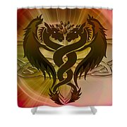 Dragon Duel Series 12 Shower Curtain
